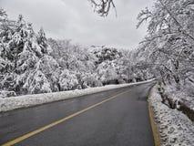 Sentiero forestale innevato in montagne Immagine Stock