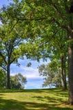 Sentiero nel bosco idilliaco immagini stock