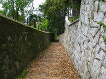Sentiero per pedoni Fotografia Stock Libera da Diritti