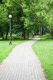 Sentiero per pedoni attraverso il parco Fondo, natura immagine stock