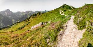 sentiero per pedoni in Austria Immagini Stock Libere da Diritti
