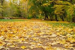 Sentiero per pedoni che conduce attraverso il parco di autunno Immagine Stock Libera da Diritti