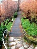 Sentiero per pedoni con le scale di pietra in parco Fotografia Stock Libera da Diritti