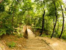 Sentiero per pedoni con un'immagine misteriosa di Fisheye della foresta fotografia stock libera da diritti