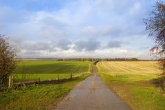 Sentiero per pedoni dei wolds di Yorkshire Fotografie Stock Libere da Diritti