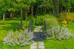 Sentiero per pedoni della foresta con il piccolo ponte Fotografie Stock Libere da Diritti