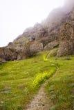 Sentiero per pedoni della montagna Fotografia Stock Libera da Diritti