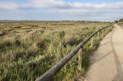 Sentiero per pedoni delle regioni paludose del fiume di Piedras Fotografie Stock