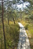 Sentiero per pedoni di legno attraverso l'IBM Moorland in Austria settentrionale, in autunno in anticipo fotografia stock libera da diritti