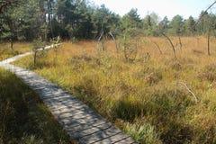 Sentiero per pedoni di legno attraverso l'IBM Moorland in Austria settentrionale, in autunno in anticipo fotografie stock