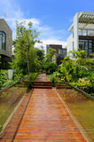 Sentiero per pedoni di legno attraverso un giardino tranquillo immagini stock libere da diritti