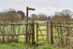 Sentiero per pedoni di novembre, metà di Sussex, Regno Unito fotografie stock