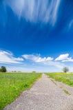 Sentiero per pedoni di sparizione al giacimento del fiore sotto cielo blu Fotografia Stock Libera da Diritti