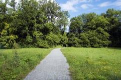 Sentiero per pedoni nel campo e nella foresta Fotografie Stock