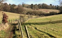 Sentiero per pedoni nelle colline di Chiltern, Regno Unito Immagine Stock