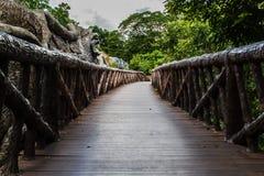 Sentiero per pedoni nello zoo Immagini Stock Libere da Diritti