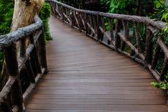 Sentiero per pedoni nello zoo Fotografia Stock Libera da Diritti