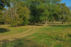 Sentiero per pedoni in parco coperto di foglie e di tronchi di albero caduti fotografia stock