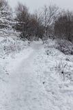 Sentiero per pedoni in salita in neve immagine stock