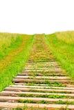 Sentiero per pedoni sulla collina Fotografia Stock