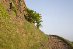 Sentiero per pedoni sulle rupe di Salisbury, parco di Holyrood, Edimburgo immagini stock