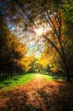 Sentiero per pedoni in un parco pittoresco di autunno di autunno Immagini Stock Libere da Diritti