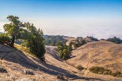 Sentiers de randonnée Photographie stock