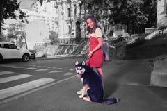 Sentimento bonito da mulher elegante relaxado ao andar com seu cão imagens de stock royalty free