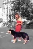 Sentimento de irradiação da jovem mulher descansado ao andar com o cão em seu fim de semana fotos de stock