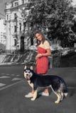 Sentimento de sorriso do estudante que surpreende ao andar no centro com seu cão ronco imagens de stock royalty free