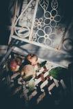Sentimento do vinatage das maçãs fotografia de stock