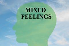Sentimentos contraditórios - conceito mental Fotografia de Stock