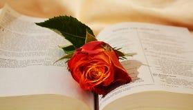 Sentimentos e confiança religiosos Fotografia de Stock