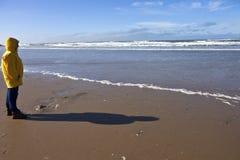 Sentindo a costa de Oregon da brisa Imagens de Stock