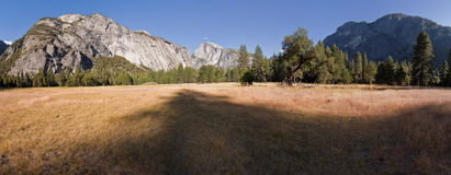 Sentinel Meadow in Yosemite Valley Royalty Free Stock Image
