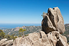 The Sentinel rock of Corsica Stock Images