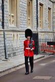 Sentinela no castelo real de Windsor Fotografia de Stock