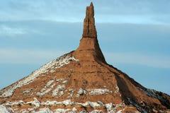 Sentinella sulla prateria Fotografie Stock