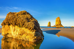 Sentinels Of The Oregon Coast. Picture of one of many sentinels found on Tolovana Beach, at Cannon Beach, Oregon.  These huge, sea life encrusted rocks are most Stock Photography