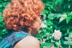 Sentir mûr de femme a monté dans le jardin Images libres de droits