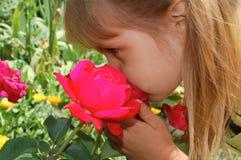 Sentir une rose Photos stock