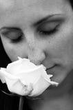 Sentir une rose Photographie stock
