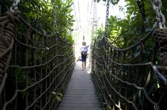 Sentosa Island tour Singapore hanging bridge Royalty Free Stock Photos