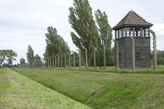 sentry birkeneau auscwitz стоковые фото