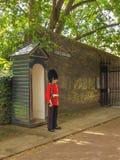 Sentry obowiązku trwanie cisza blisko buckingham palace Fotografia Stock