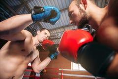 Sents del boxeador su opositor al golpe de gracia Foto de archivo libre de regalías
