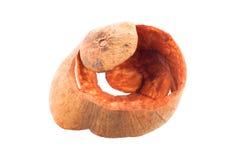 Sentul, de huid van Santol friut Royalty-vrije Stock Afbeeldingen