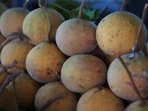 Sentul frukt för försäljning i lokal marknad Arkivbild