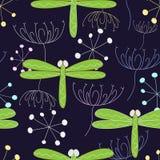 Senza giunte dalla libellula Fotografia Stock