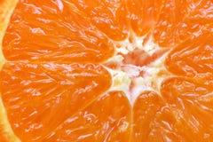 Seção alaranjada dos citrinos Fotografia de Stock Royalty Free